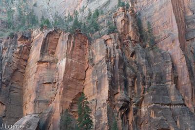 Vertical sandstone walls at Zion
